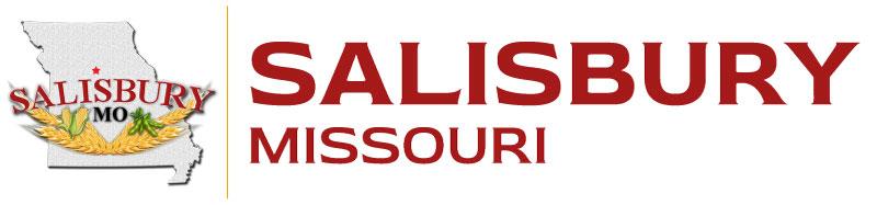 Salisbury Header Logo