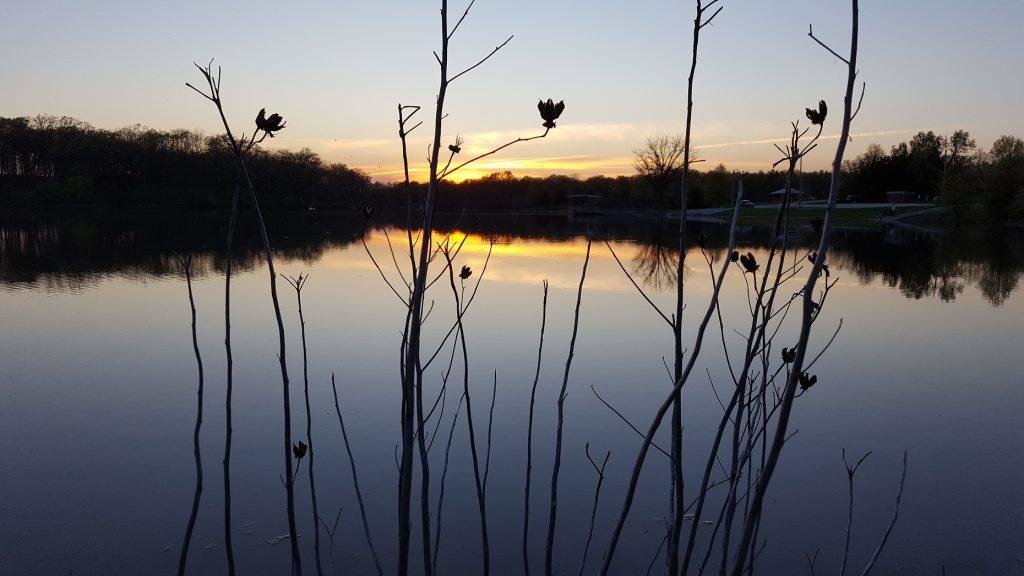 Pine Ridge Lake Sunset 3